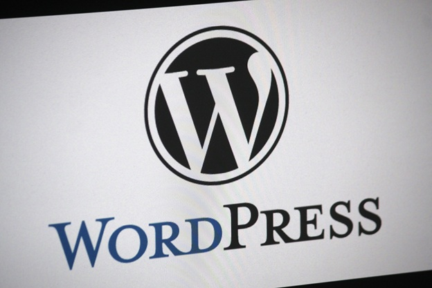 WordPress update 5.2.3: the Breakdown